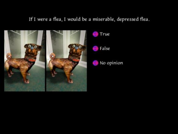 depressed flea