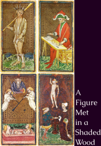 Cover art for Figure Met in a Shaded Wood